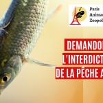 Entretien au Ministère de l'Écologie sur la pêche au vif