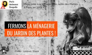 La Ménagerie, le zoo du Jardin des Plantes de Paris