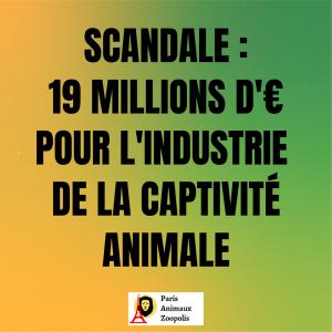 SCANDALE : AIDES MASSIVES POUR LES CIRQUES AVEC ANIMAUX